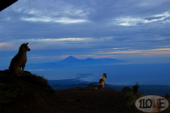 #7 Trekking am Rinjani auf Lombok - Indonesien