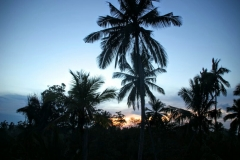 Sonnenaufgang Mirissa