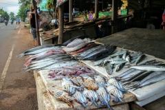Fischstand Mirissa