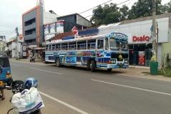 typischer Bus in Sri Lanka